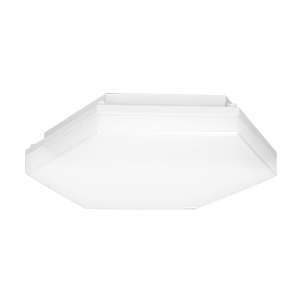 PATY LED wall and ceiling light, 24W